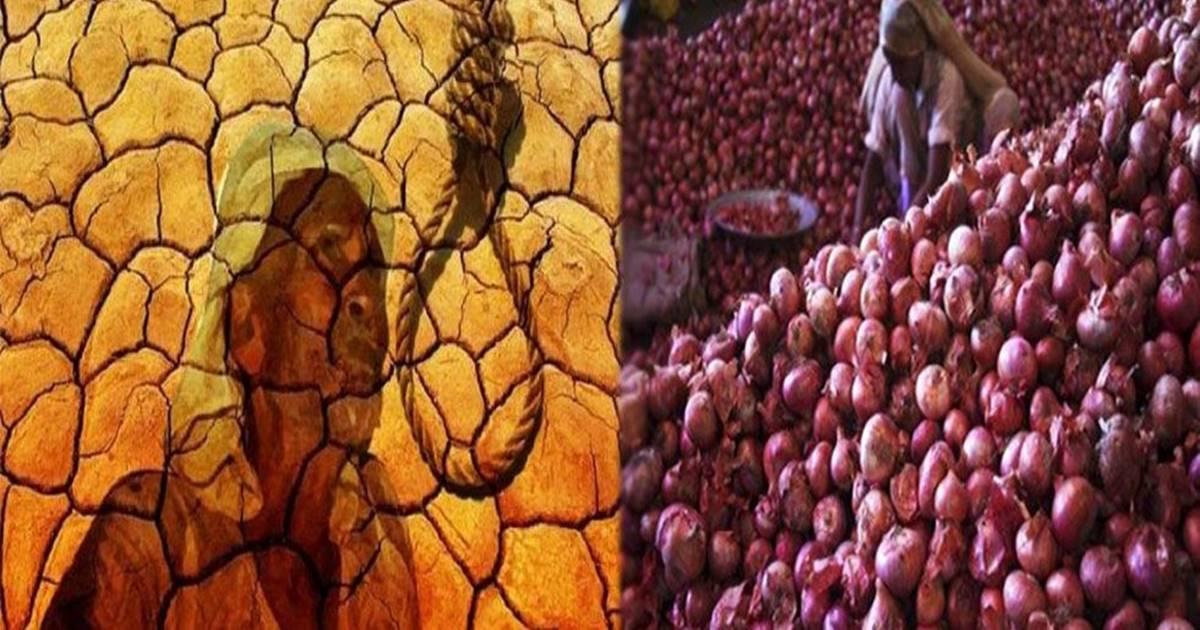 বাংলায় ২৫ টাকা কেজি পেঁয়াজ, নাসিকে দাম না পেয়ে আত্মহত্যা/The News বাংলা